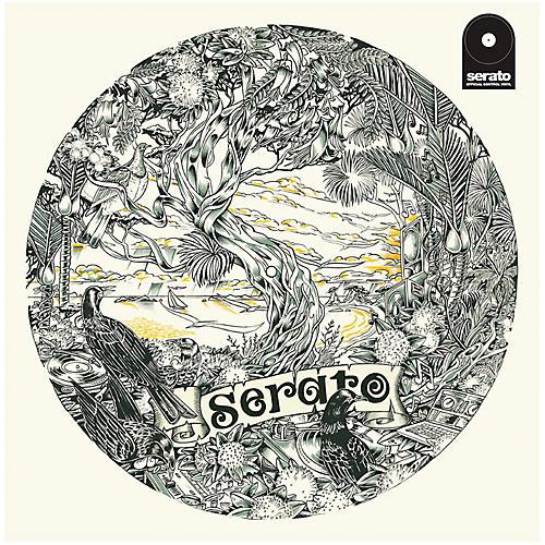 SERATO 12 Inch Control Vinyl - Dan Tippett Picture Disc (Pair)