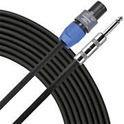 Livewire 14g 1/4 in.-Speakon Speaker Cable - 100 ft.