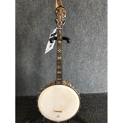 Orpheum 1920s MODEL 1 TENOR Banjo