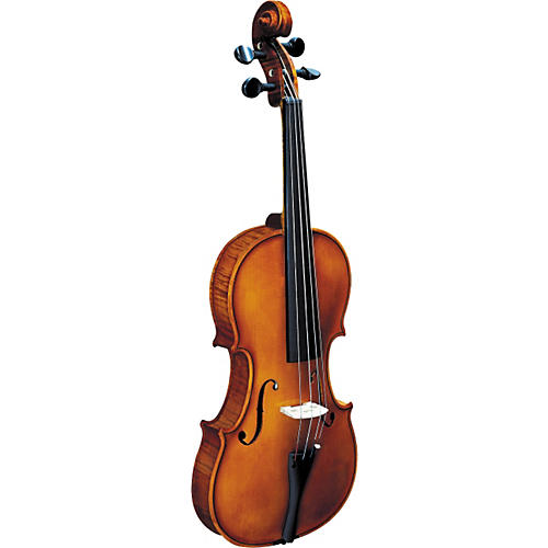 Strunal 193W BH Concert Violin Outfit-thumbnail