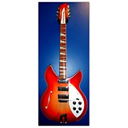 Rickenbacker 1995 PLUS Hollow Body Electric Guitar