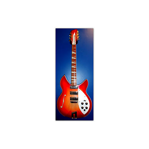 Rickenbacker 1995 PLUS Hollow Body Electric Guitar