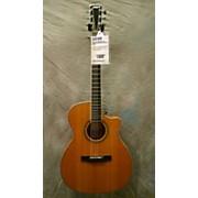 Larrivee 1999 OM09 CUSTOM SHOP Acoustic Guitar