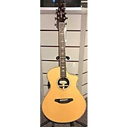 Breedlove 2016 Stage Concert Acoustic Electric Guitar