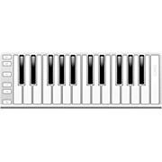 25 Key Mobile Keyboard Controller