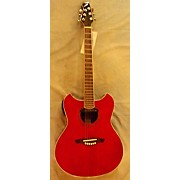 Wechter Guitars 3102 Acoustic Electric Guitar