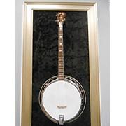 Alvarez 4291 Banjo