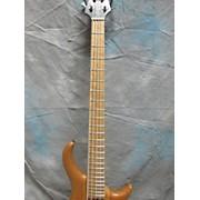 Warrior 5 String Electric Bass Guitar
