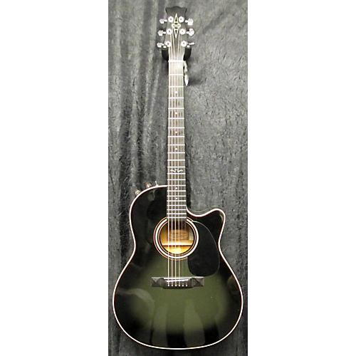 Alvarez 5087 Acoustic Guitar