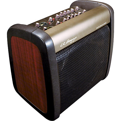 LR Baggs A-REF 200Watt 2-Channel Acoustic Amplifier