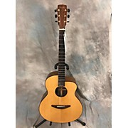 Baden A STYLE Acoustic Electric Guitar