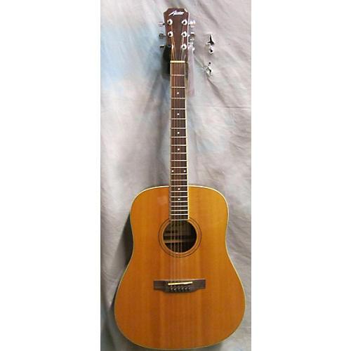 Austin AA25D Acoustic Guitar