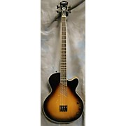 Washburn AB-40 Acoustic Bass Guitar