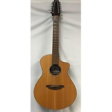 Breedlove AC250/SM-12 12 STRING 12 String Acoustic Electric Guitar
