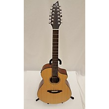 Breedlove AC250/SM-12 12 String Acoustic Electric Guitar