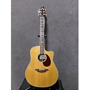 Breedlove AD25 SR Plus Acoustic Electric Guitar