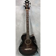 Ibanez AEB10E Acoustic-Electric Bass Acoustic Bass Guitar