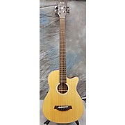 Ibanez AEB305E 5 String Acoustic Bass Guitar