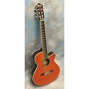 Ibanez AEG10NE Classical Acoustic Electric Guitar