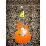 Ibanez AEG10NII Classical Acoustic Electric Guitar
