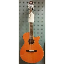 Ibanez AEG10NII Classical Acoustic Electric Guitar