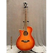 Ibanez AEG18LII Acoustic Electric Guitar