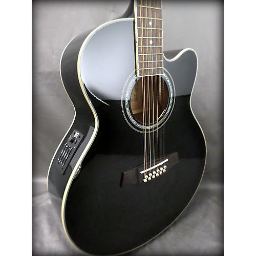 Ibanez AEL2012E 12 String Acoustic Electric Guitar-thumbnail