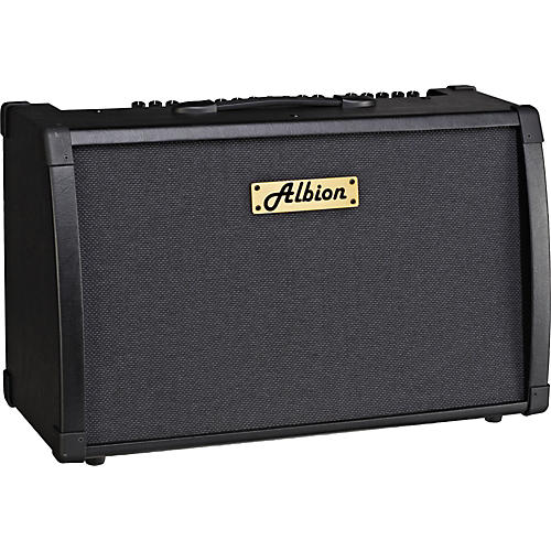 Albion Amplification AG Series AG80DFX 80W Guitar Combo Amp-thumbnail