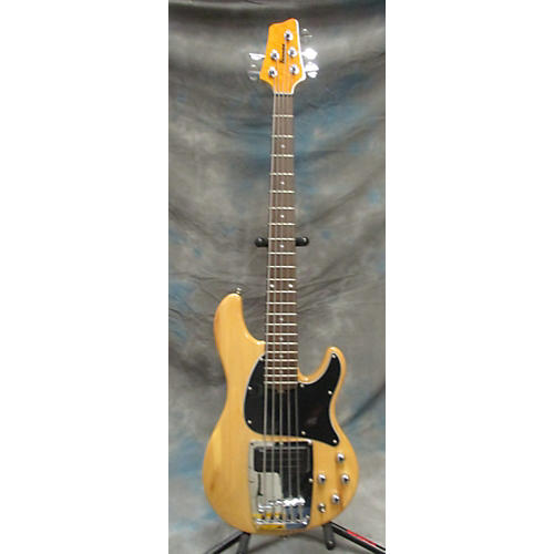 Ibanez ATK205 Electric Bass Guitar