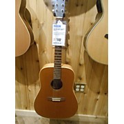 Art & Lutherie Acoustic Acoustic Guitar