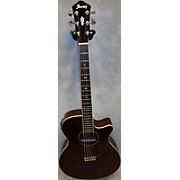 Ibanez Aeg12II Acoustic Electric Guitar