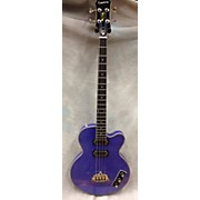 Epiphone Allen Woody Limited Edition Electric Bass Guitar