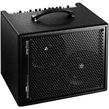 AER Amp-Three 200W Bass 2x8 Combo Amp