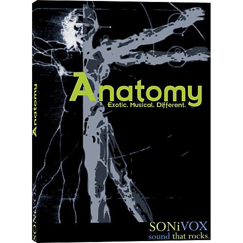 Sonivox Anatomy
