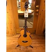 Breedlove Atlas Series Studio BJ350/SME-4 Acoustic Bass Guitar