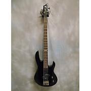 ESP B10 Electric Bass Guitar