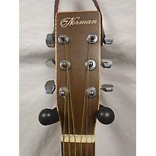 Norman B20 Acoustic Guitar