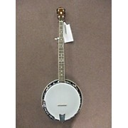 Gold Tone BG 250 Banjo
