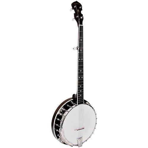 Gold Tone BG-250F Resonator Banjo-thumbnail