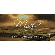 Spitfire BML Symphonic Strings Mural 1