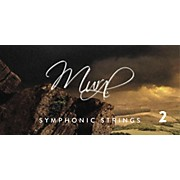 Spitfire BML Symphonic Strings Mural 2