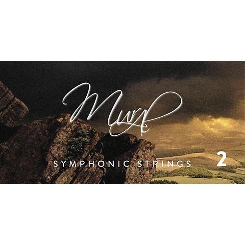 Spitfire BML Symphonic Strings Mural 2-thumbnail