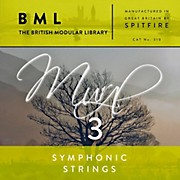 Spitfire BML Symphonic Strings Mural 3