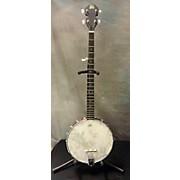 Rogue Banjo Banjo