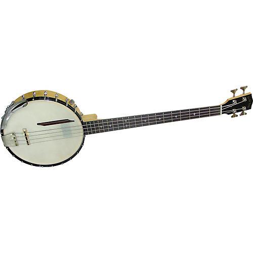 Gold Tone Banjo Bass