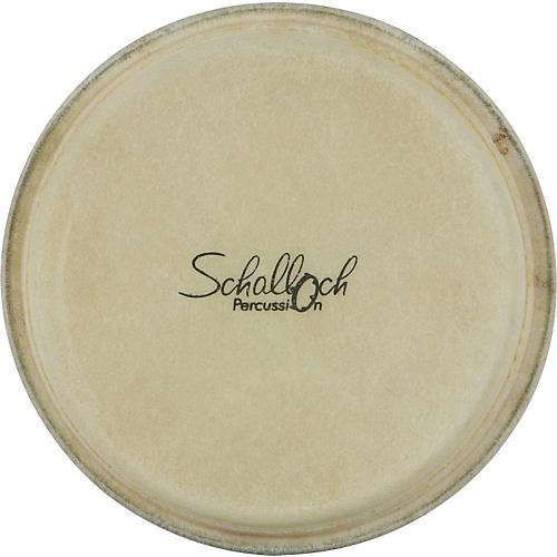 Schalloch Bongo Buffalo Skin Replacement Head  6.5 in.