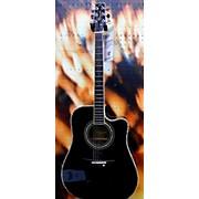 Peavey Briarwood Acoustic Guitar