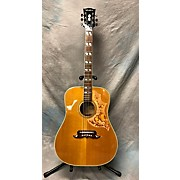 Ventura Bruno V23 Acoustic Guitar