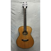 Breedlove C20/SMYE Oregon Series Acoustic Electric Guitar