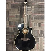 Breedlove C25/SME Black Magic Acoustic Electric Guitar